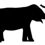 象(ゾウ)革財布の選び方とおすすめブランドから人気商品をピックアップ